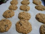 Low fat oatmeal chocolate chip cookies