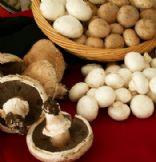 Spicy Ranch Portabella Mushroom Wrap