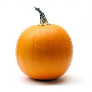 Pumpkin Pie Yogurt