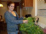 Fresh Turnips and Mustard Greens