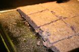 Low Fat Jalapeno Blue Corn Bread